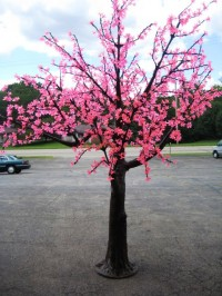 7'  Lighted Cherry Blossom Tree Pink 014