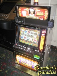 IGT I Game Plus  Fortune Cookie Video Slot Machine 001