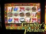 IGT I Game Plus  Fortune Cookie Video Slot Machine 004