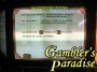 IGT I Game Plus  Fortune Cookie Video Slot Machine 012